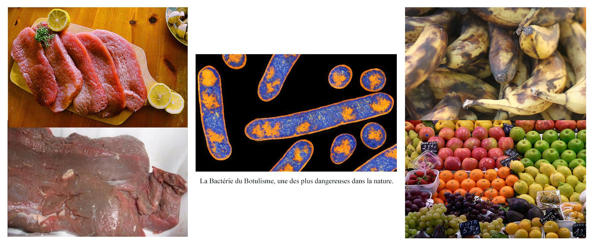 Longue vie aux aliments groupe coub che djibouti - Provoquer une fausse couche naturellement ...